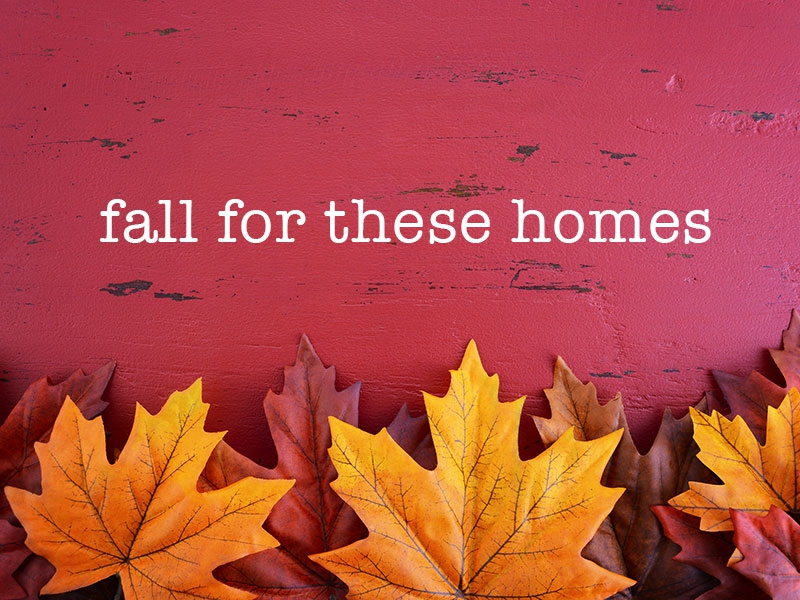 Top 5 Autumn-perfect Apartments in BA