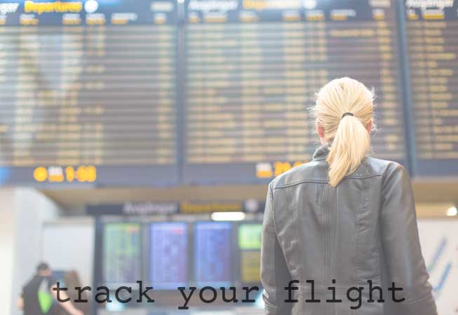 Plan Trip to Buenos Aires Track Your Flight