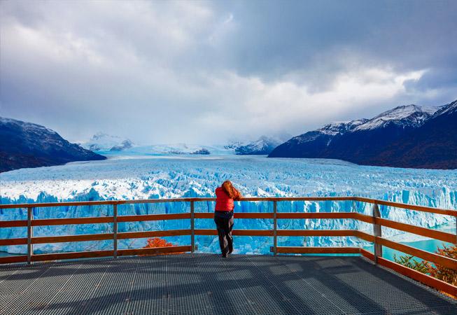 Calafate Glaciar Perito Moreno Argentina
